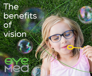 The Benefits Of Vision